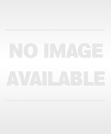 Big Sky Skull Transfer Sticker